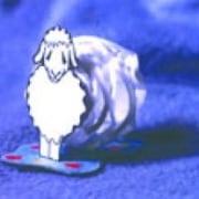 Bárány - térmakett